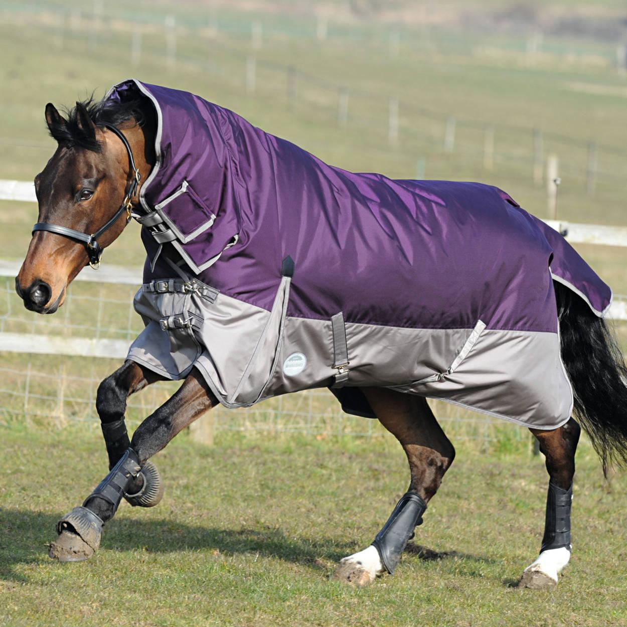 Weatherbeeta Horse Rugs Home Decor