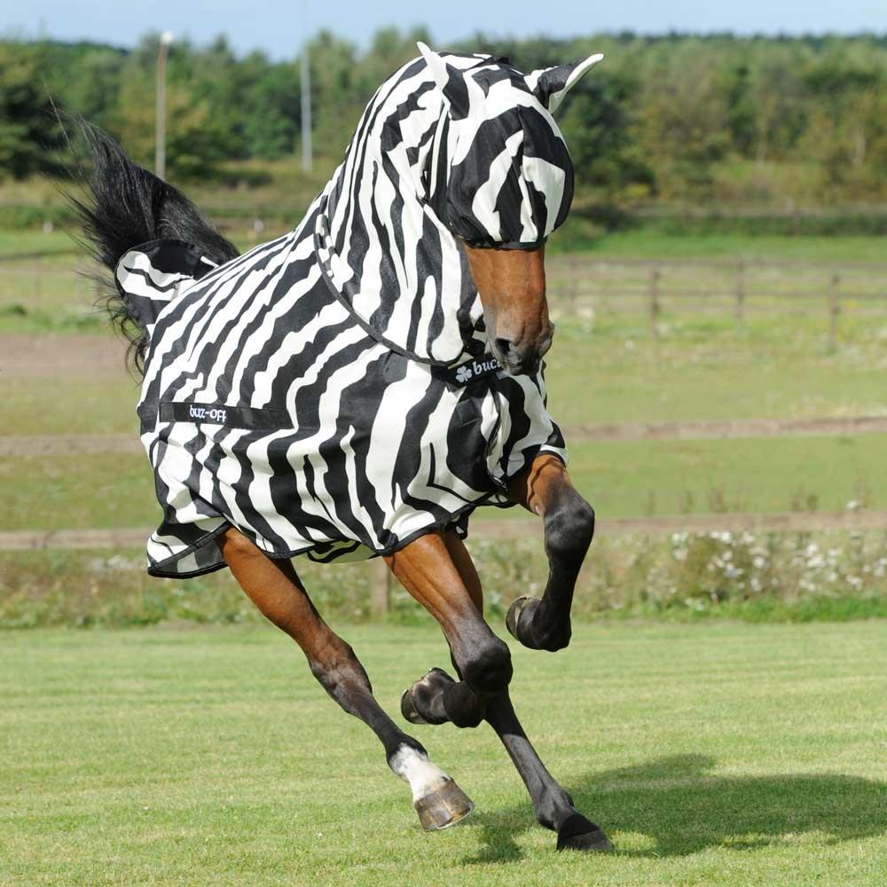 Zebra Fly Rug Uk: Bucas Buzz-Off Full Neck Zebra Fly Rug