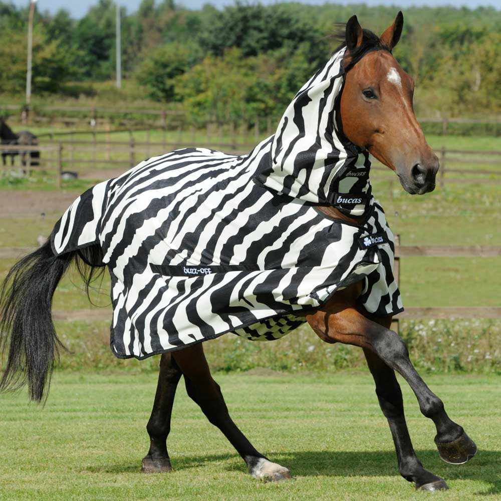 Bucas Buzz-Off Full Neck Zebra Fly Rug | Redpost Equestrian - Redpost  Equestrian