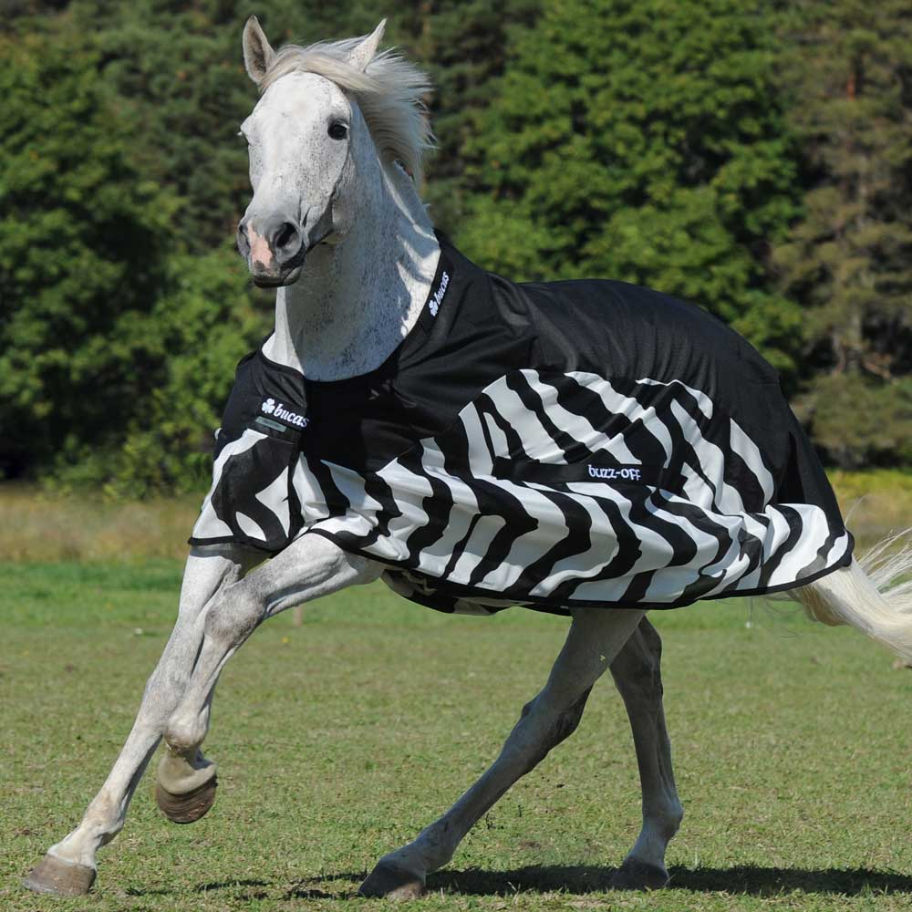 Zebra Pattern Horse Rug: Bucas Buzz-Off Fly/Rain Sheet Hybrid Rug