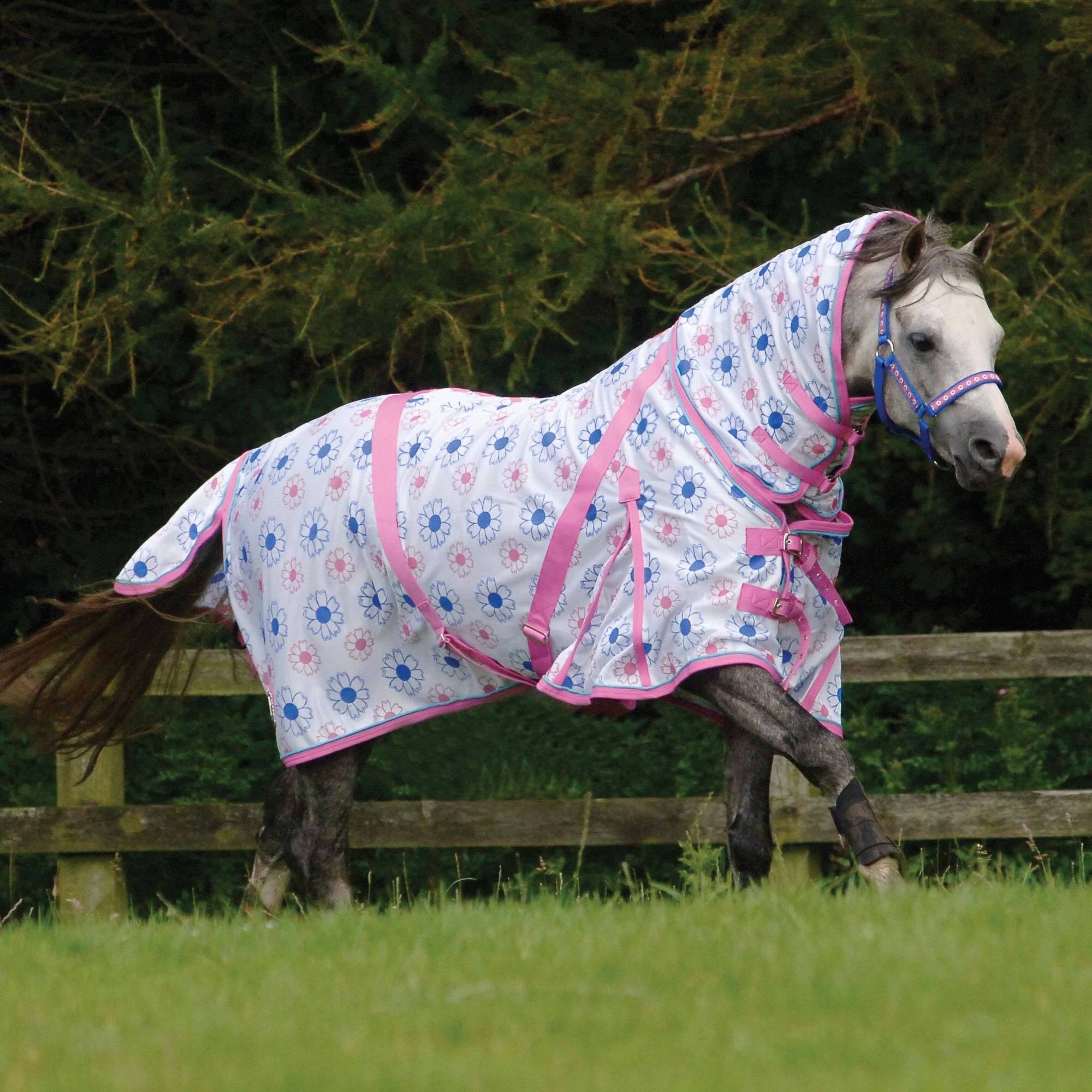 Pink Horse Rugs Home Decor