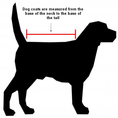 How to measure your dog for a dog coat or rug