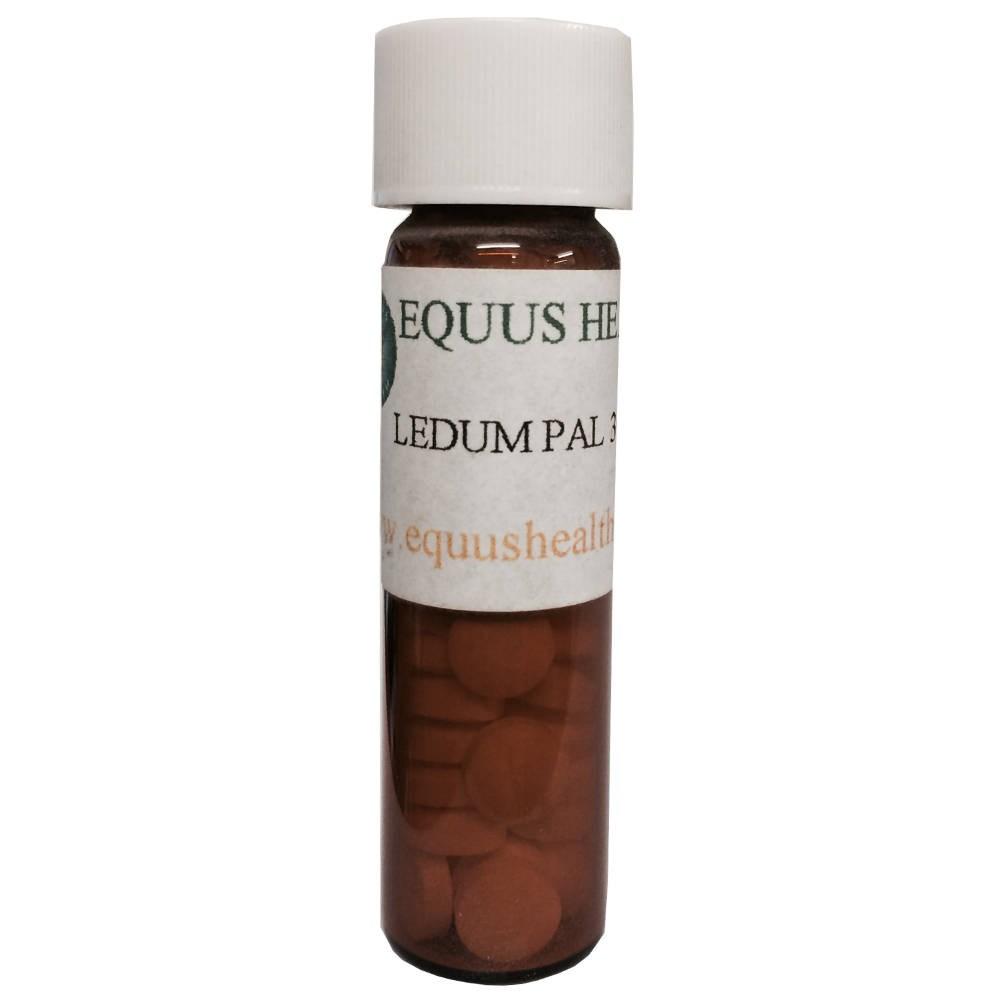 Equus Health Ledeum Pal - 30c - Healing