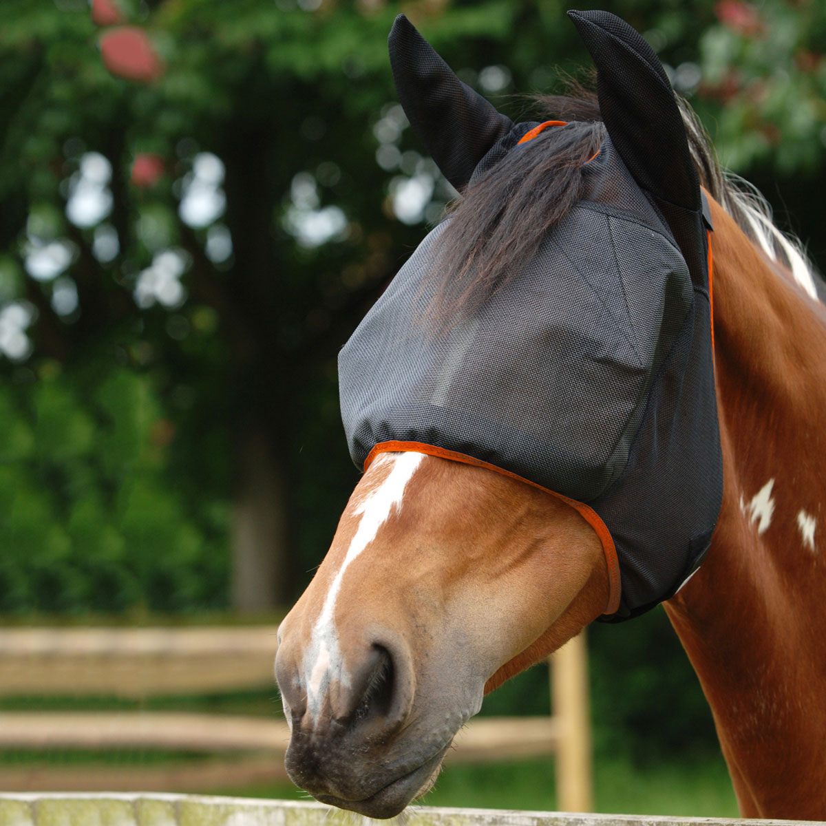Equilibrium Net Relief Riding Fly Mask with Ears Black Medium size