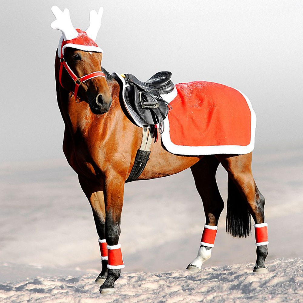 Christmas Horse Tack.Horze Christmas Exercise Sheet Red White