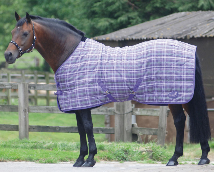 Stable Rugs For Horses Stable Rug 115g Purple