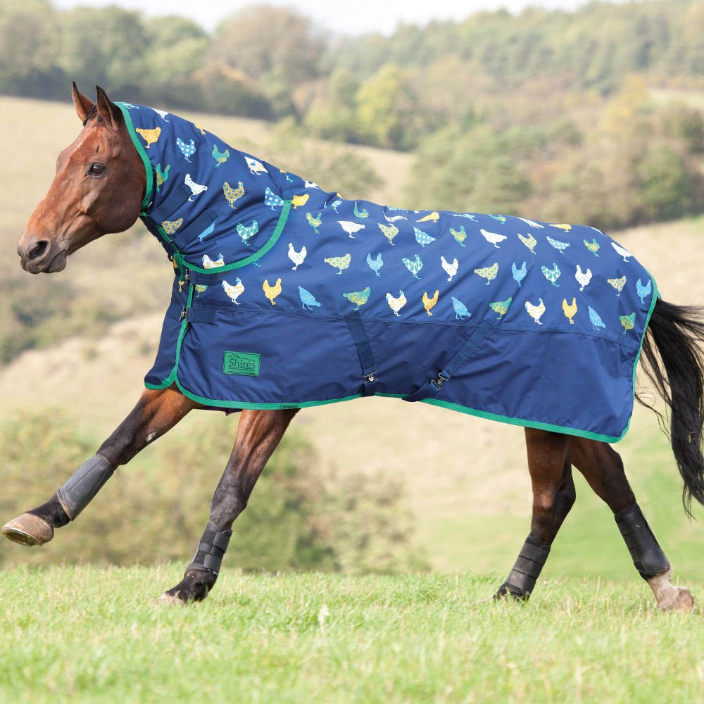 Shires Tempest Original 200g Combo Turnout Rug