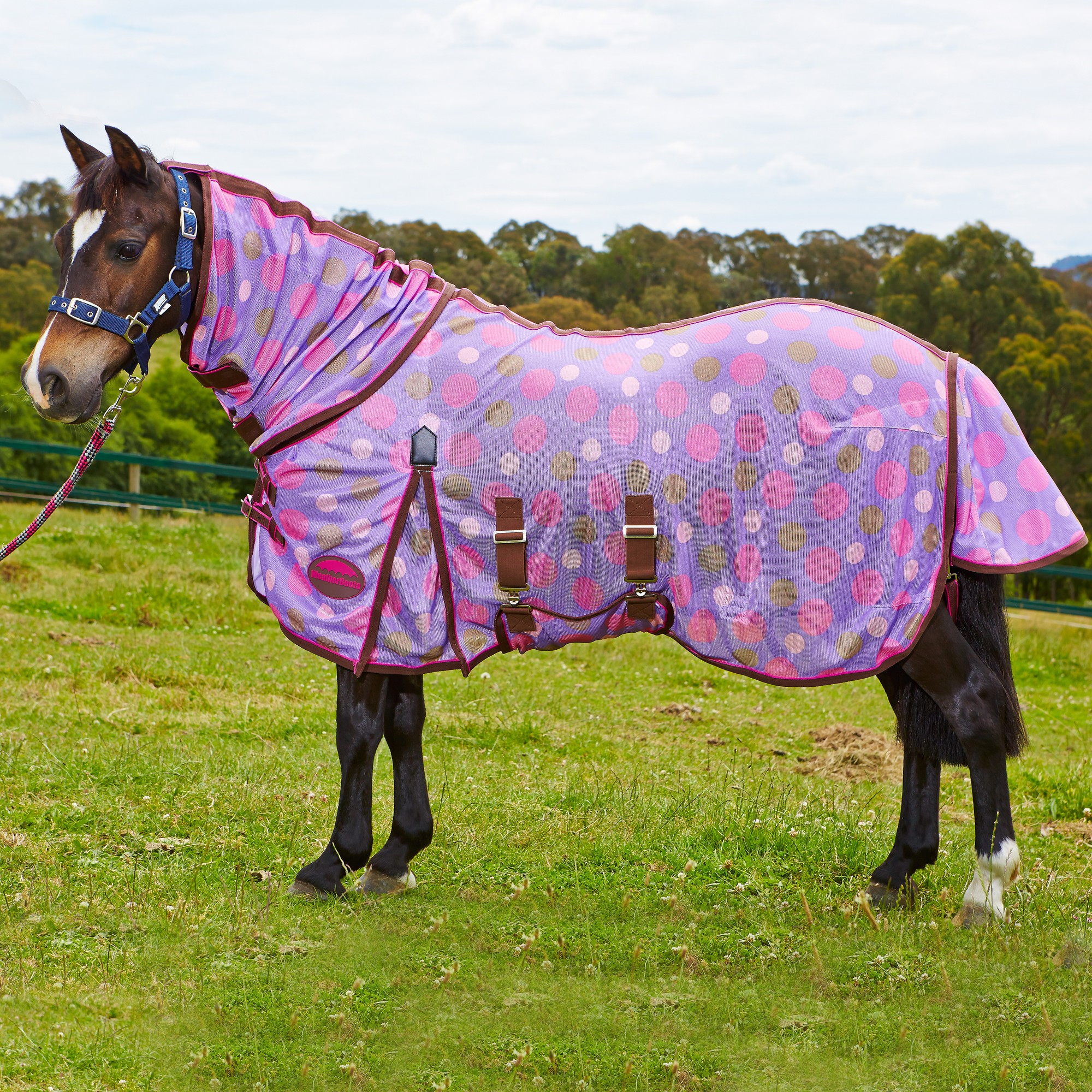 Weatherbeeta Snowman Rug: Weatherbeeta Airflow Full Neck Combo Pony Fly Rug