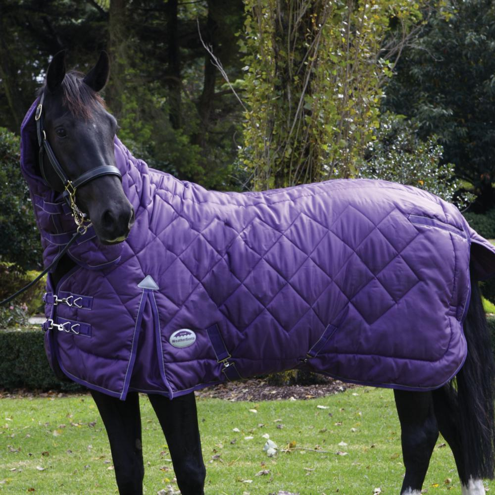 Stable Rugs For Horses Stable Rug Purple/silver